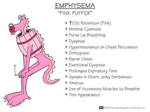 """COPD - Emphysema (""""Pink puffer""""):"""