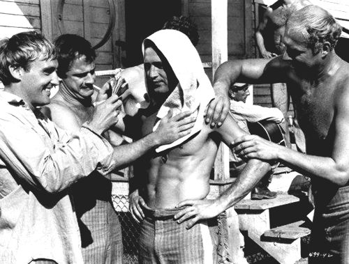 Dennis Hopper, Paul Newman and George Kennedy behind the scenes of Cool Hand Luke (1967)