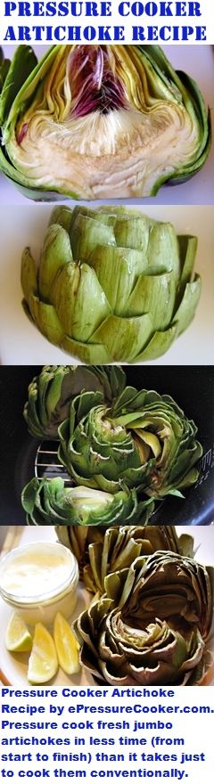 Pressure Cooking Recipe: Pressure Cooker Artichokes Recipe by ePressureCooker.com.  Instead of spending the better part of an hour cooking artichokes conventionally, prepare fresh, jumbo artichokes in about a half hour, start to finish.  Best of all, on hot days, you won't have to turn your kitchen into a steam sauna to get your artichoke fix!