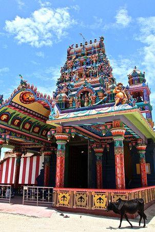 Jaffna au Sri Lanka !