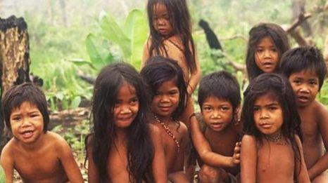 Contoh Descriptive Text Tentang Budaya Quot Suku Anak Dalam
