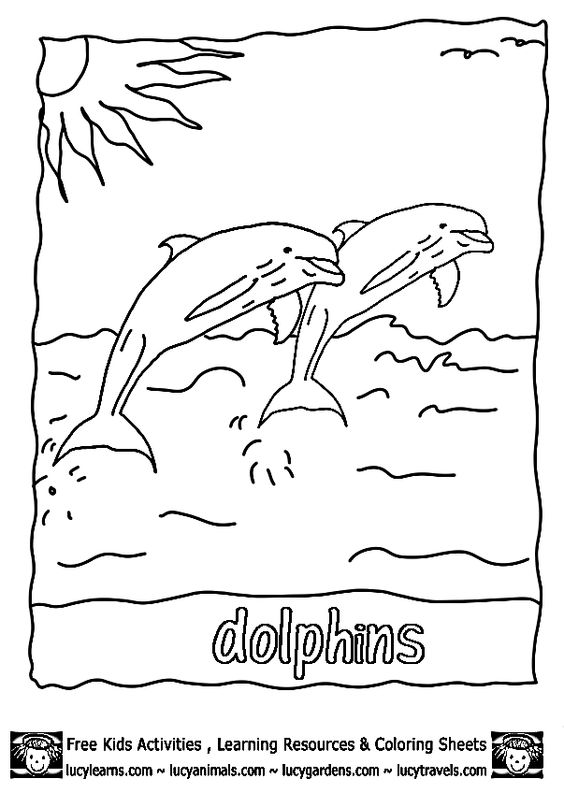 e coloring pages for dolphins - photo #40