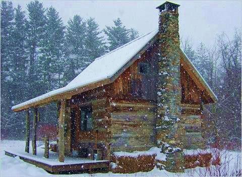 cozy comfy cabin