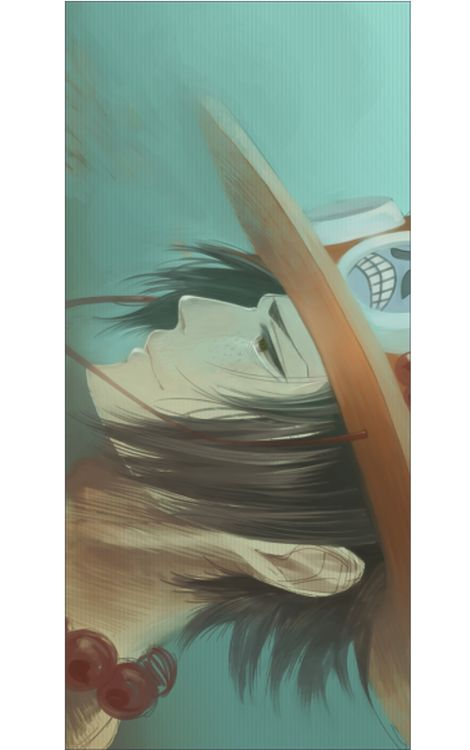 Portgas D. Ace (Side face... and soft.)