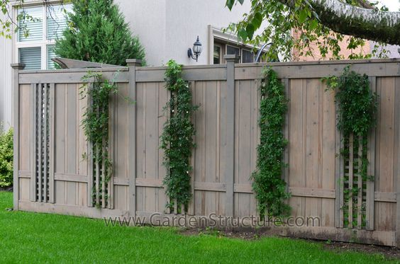 Unusual fence ideas fence with inset lattice sections for Garden sectioning ideas