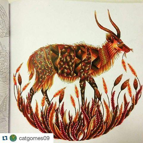 Millie Marotta coloridos (@milliemarottabooks)   Instagram photos and videos