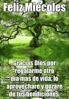 Feliz Miércoles Dios te bendiga hoy y siempre - Hermosas tarjetas con mensajes animados. | Mensajes, Frases, Tarjetas, Postales y Vídeos cristianos Gratis