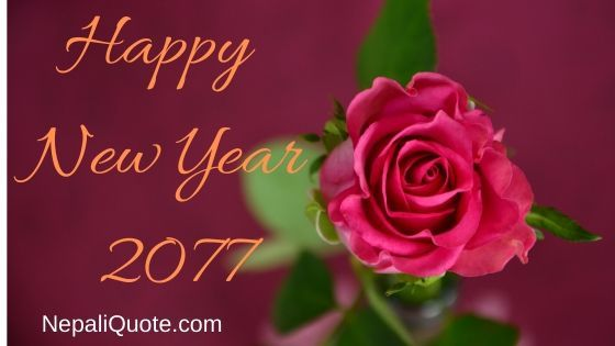 Happy New Year 2077 In 2020 Good Morning Rose Images Good Morning Roses Good Morning Images