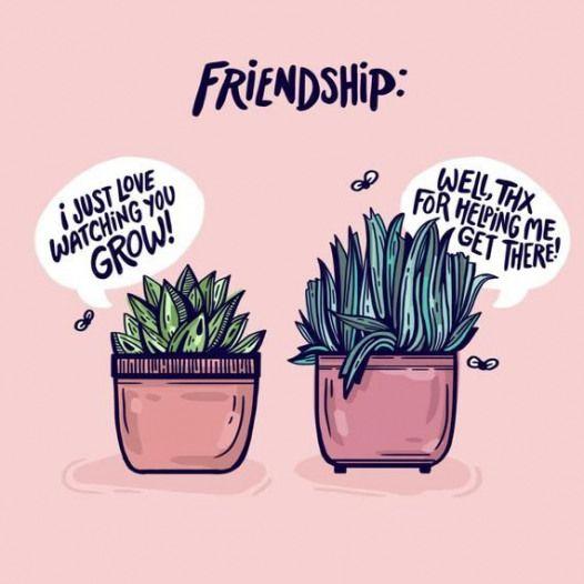 Friendship Greeting Card Plant Pals Birthday Card Best Friends Succulents Plants Plants Quot Friendship Quotes Feel Good Quotes Happy Friendship Day