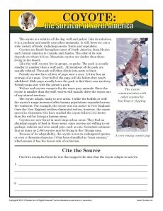 grade 4 reading comprehension workbook pdf