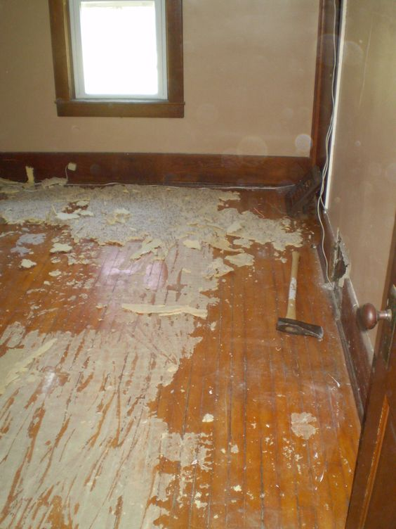 5 rooms of carpet needed to be tackled! Yuck