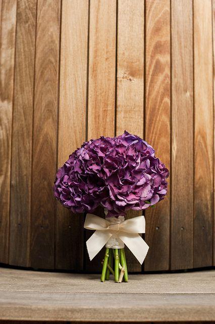 Purple Hydrangea. this is my Favorite