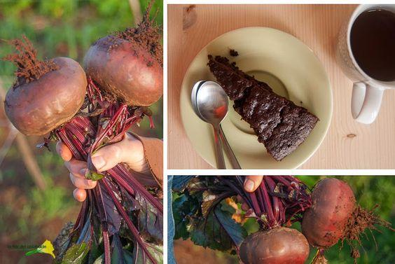 La flor del calabacín: De la huerta a la mesa: bizcocho de remolacha y chocolate con masa madre integral