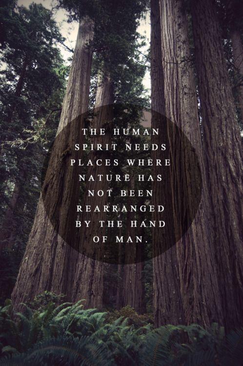 Human Spirit.