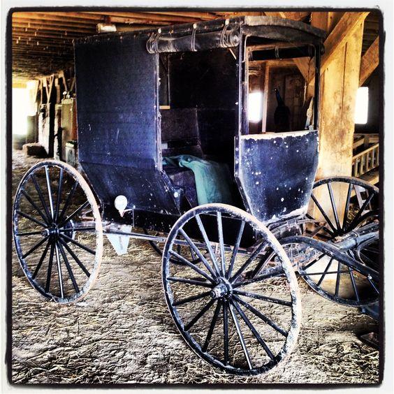 Amish Buggy @ Four Mile Greenhouse, Jackson, Ohio