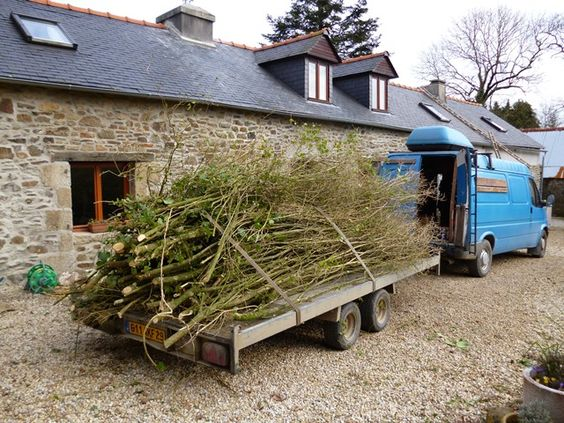 Bye bye hedge! Ty Hir holiday homes, Finistere, Brittany