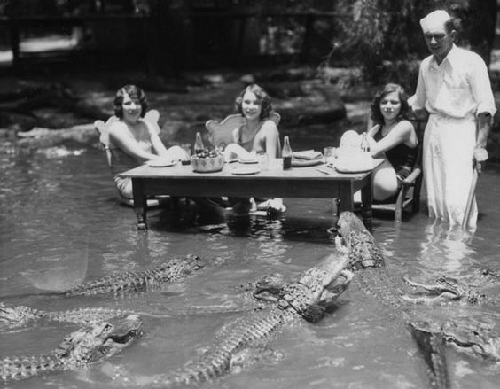 """Women dine in a pond filled with alligators at the California Alligator Farm. Courtesy of the Los Angeles Public Library Photograph Collection."""