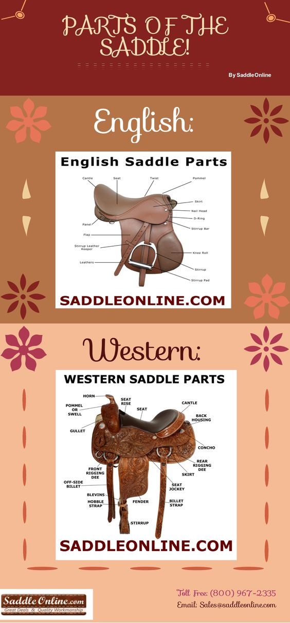 Parts Of The Saddle!! :) <3