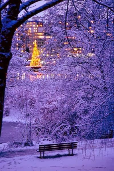 Christmas in Stanley Park, Vancouver, British Columbia, Canada: