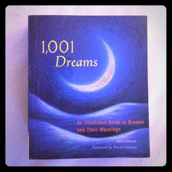 Dream Book Perfect condition. price firm. just under listed brand for views Urban Outfitters Accessories