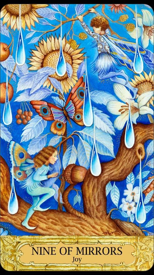 Nine of Mirrors (Cups) - Chrysalis Tarot