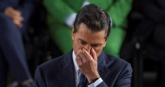 """UP revisará posible plagio de EPN; van 4 trampas: 2012, """"casa blanca"""", Miami y la tesis: Jorge Ramos http://insurgenciamagisterial.com/up-revisara-posible-plagio-de-epn-van-4-trampas-2012-casa-blanca-miami-y-la-tesis-jorge-ramos/"""