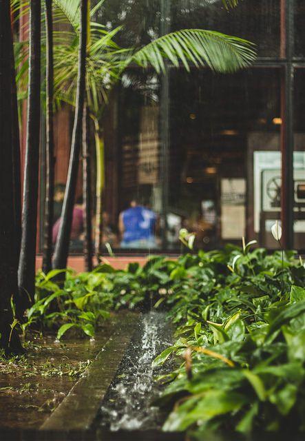 Chuva na Estação das Docas (1)