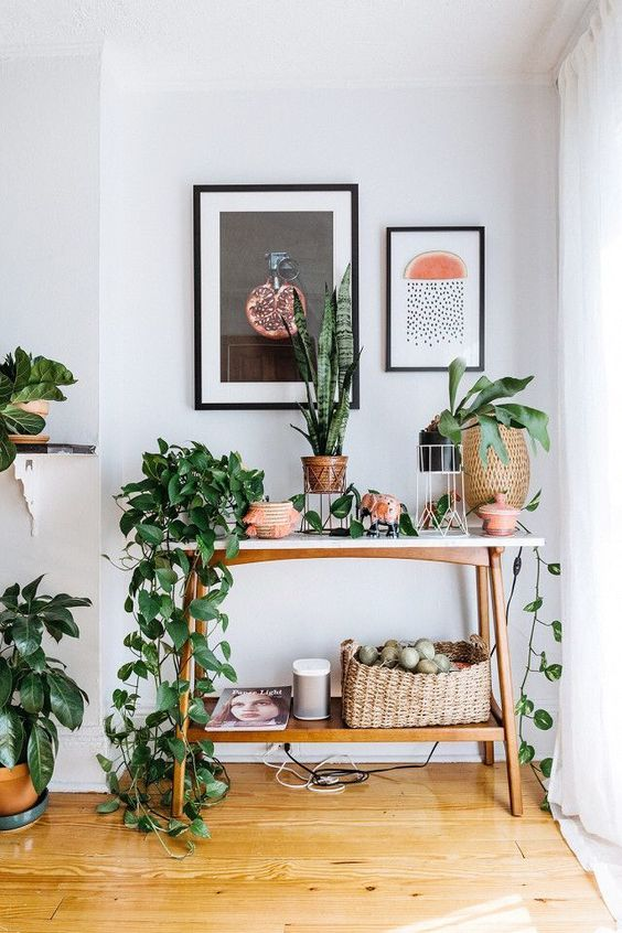 Ideal way to incorporate greenery into your home. Layer lots of houseplants along natural wooden furniture and white walls for a clean, modern and bohemian interior style.