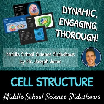 Cell Structure: A Life Sciences Slideshow!