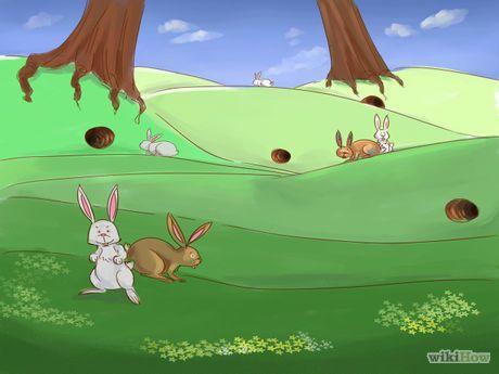 Make a Rabbit Snare Step 1.jpg