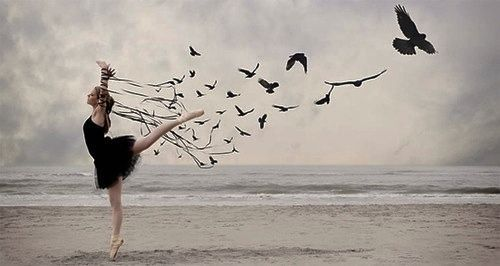 All your life you were only waiting for this moment to be free. -Blackbird -
