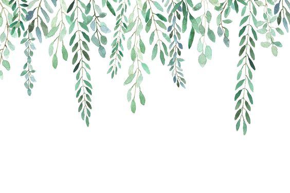 Sélection de fonds d'écran de printemps : cactus, fleurs et bonheur ! Illustration, fonds d'écran