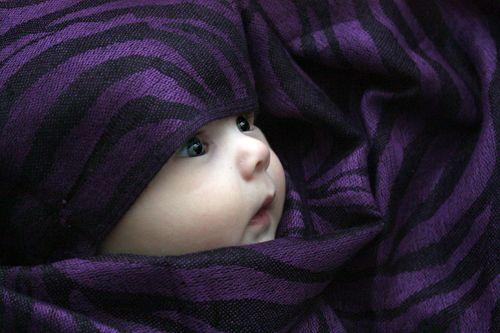sweet little baby wrapped up in purple & black