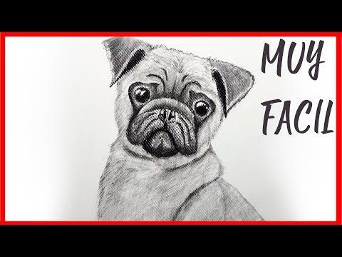 Como Dibujar Un Perro Realista Paso A Paso Facil A Lapiz No Podras Dejar De Ver Este Como Dibujar Un Perro Animales Faciles De Dibujar Perros Doguillo
