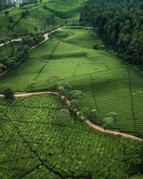 Reposted From Whooooaa Pangalengan Termasuk Kawasan Bandung Selatan Berada Di Wilayah Pegunungan Dan Perbukitan Tempat Ini Men Tempat Indonesia Fotografi
