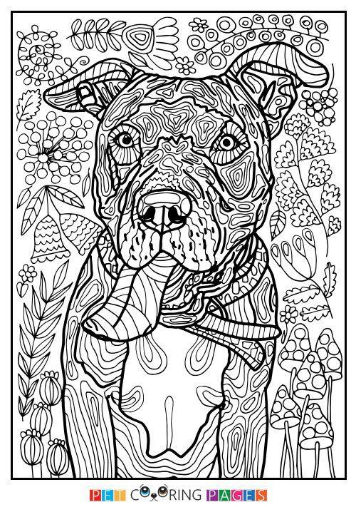 Pin Von Tanja Brandenburger Auf Hunde Dogs Malvorlagen Tiere Kostenlose Erwachsenen Malvorlagen Mandala Ausmalen
