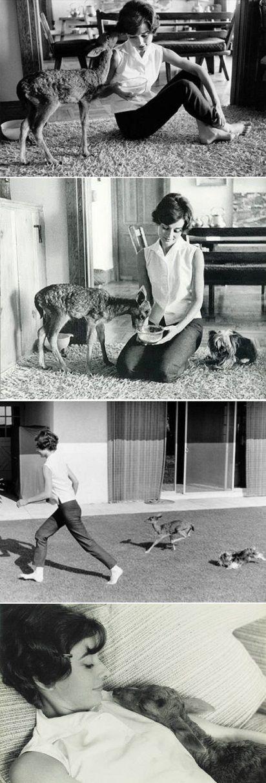Audrey Hepburn And Her Baby Deer