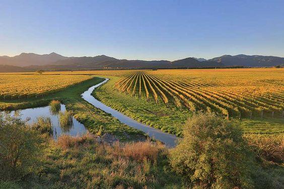 Nét thanh bình của mùa thu New Zealand