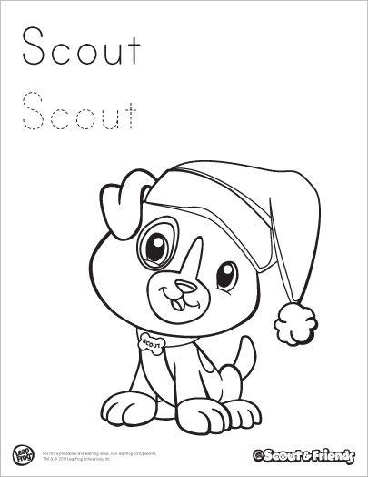 friend scout login