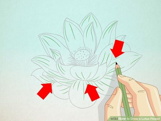 Image titled Draw a Lotus Flower Step 5