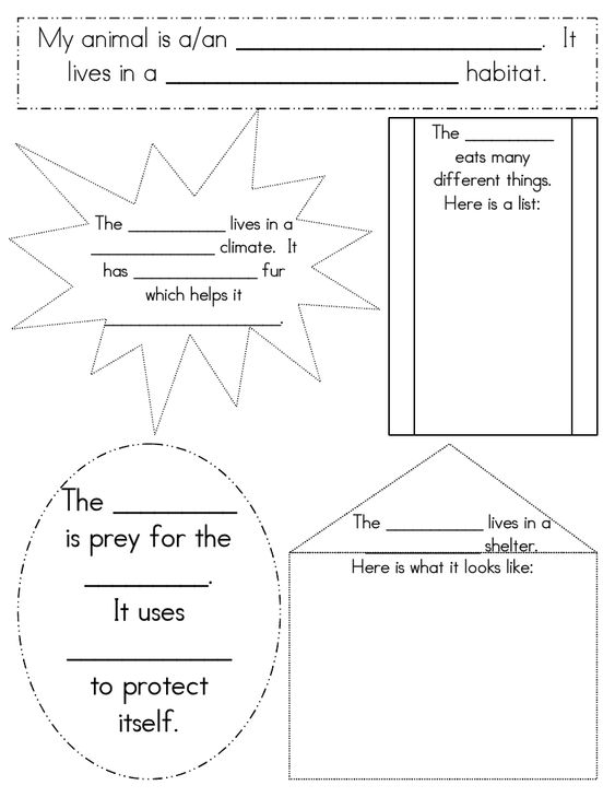 This worksheet on animal habitats might have to be adjusted slightly for 1st grade, but I love the concept of focusing on one specific animal and the habitat that makes it unique.