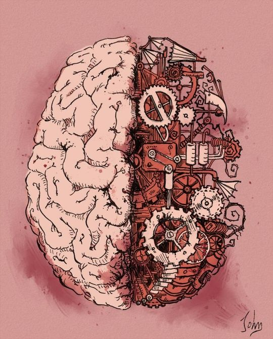 """ ""Neuroanatomy"" by Jonathan Calsolaro on INPRNT """