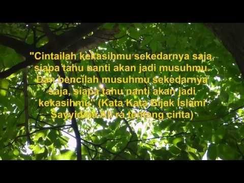 Kata Kata Bijak Dari Imam Ali Bi Abi Thalib Tentang Cinta Dan Wanita Bijak Youtube Imam
