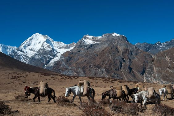 Near Goyul, Bhutan