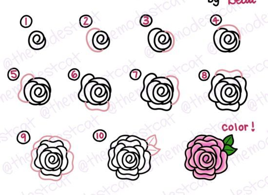 How To Doodle A Rose Easy Way To Draw A Rose Doodles With Bella