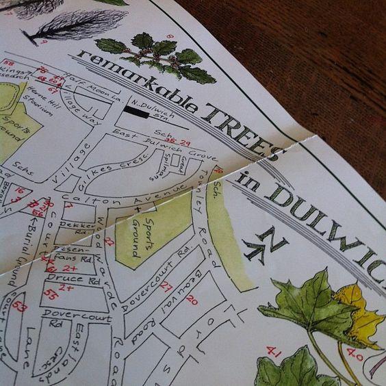 Remarkable tree map via @Elizabeth Fell