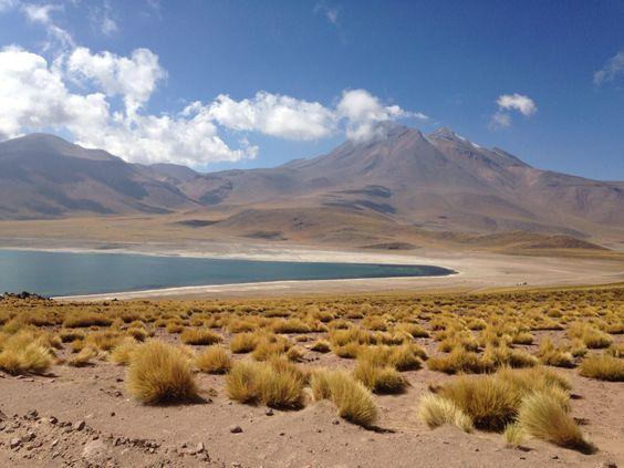 Lagunas antiplanicas, San pedro de atacama, chile