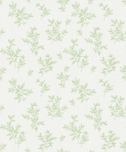 Brewster 2811 Lv04204 Advantage Pothos Light Green Toss Wallpaper Light Green Sage Green Wallpaper Mint Green Wallpaper Iphone Green Aesthetic
