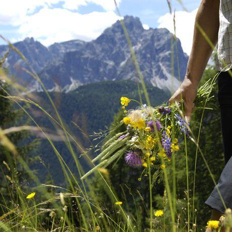 Gasthof Huber Prags Toblach Hochpustertal Südtirol Urlaub Dolomiten Ferien Zimmer Restaurant