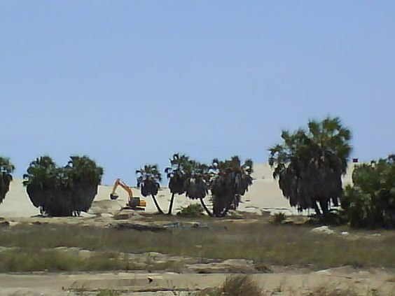 Ilha do Mussulo uma parte ainda desabitada.